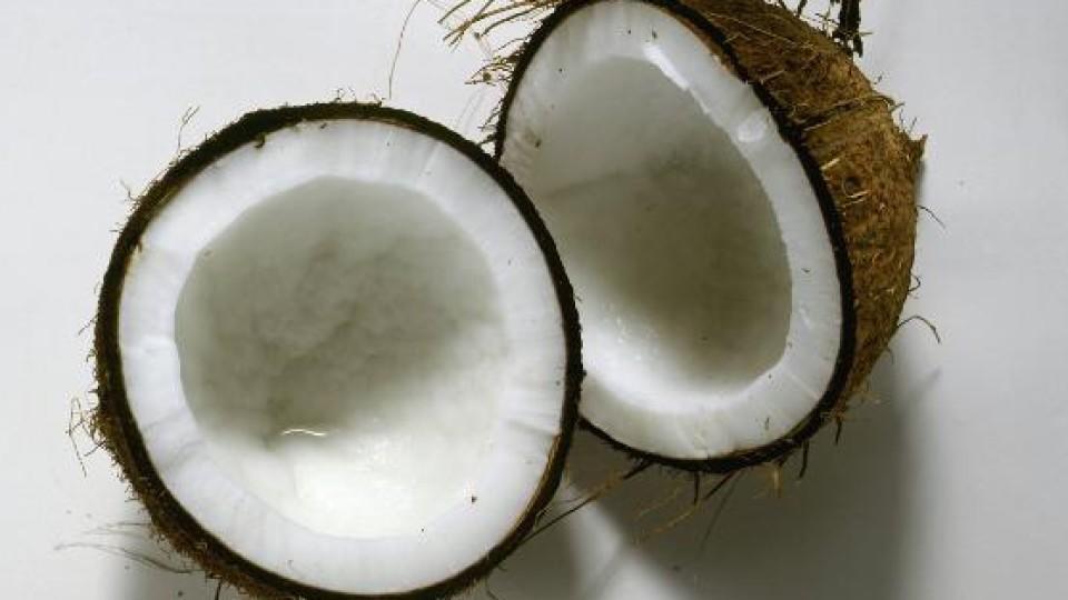 Sommerlicher Snack mit Kokosnuss.
