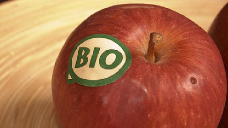 Was genau bedeutet Bio?