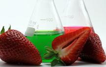Pestizide in Lebensmitteln: Wie belastet ist unser Essen?