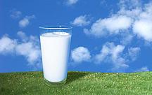 Länger haltbare Milch: Warum gibt es keine Frischmilch mehr?