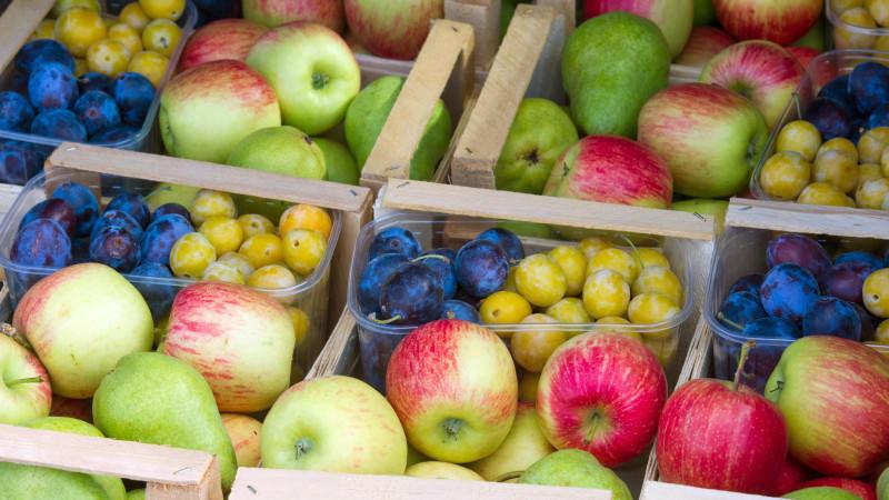 Herbstfrüchte und Obst der Saison Mandarinen, Äpfel