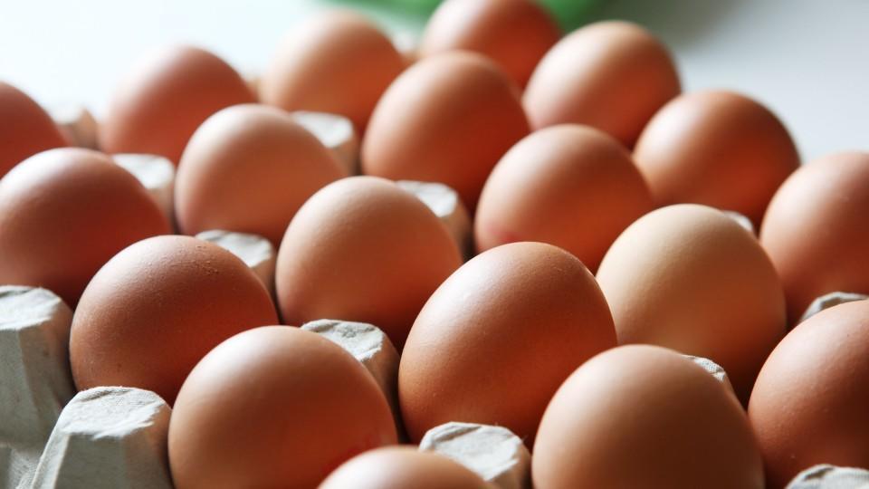 Eier Haltbarkeit und Frische