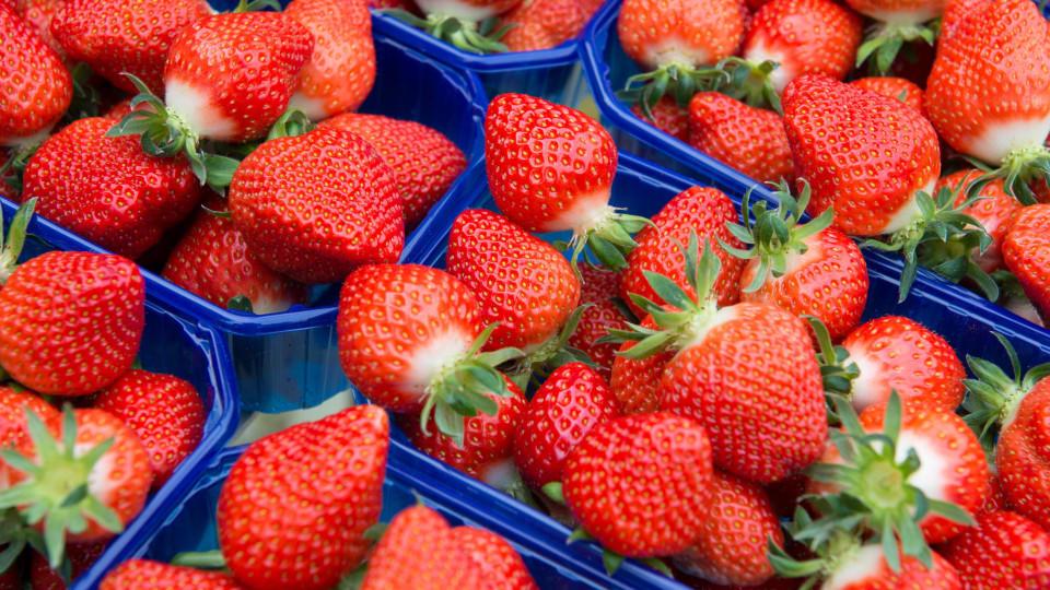 erdbeeren kaufen so erkennen sie frische erdbeeren. Black Bedroom Furniture Sets. Home Design Ideas