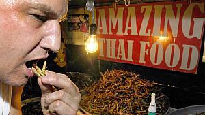 Insekten: Vitaminreich, mineralienreich - und lecker?
