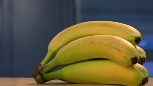 Bananenschale statt Pflaster