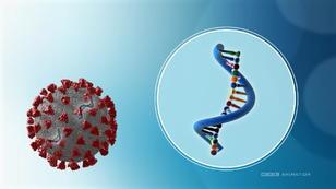 Corona-Mutationen: Was wir bisher wissen